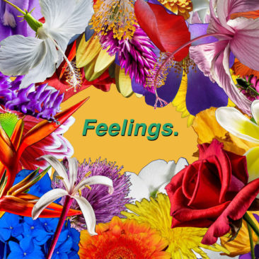 Liam B. Smith – Feelings (LYRIC VIDEO)